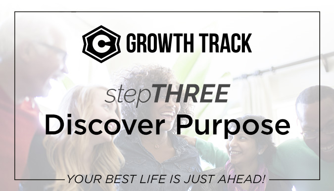 Growth Track 2019 - stepTHREE